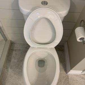 toilet disinfection